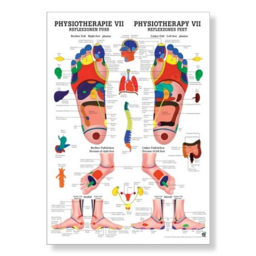 Reflexzonen Fuss Poster 50 x 70 cm