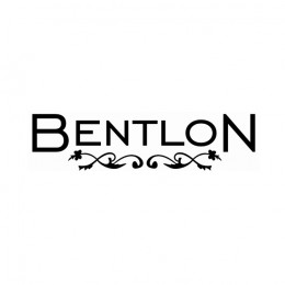 'Bentlon Staubbeutel, 5 Stück'